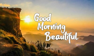 Best Good Morning Beautiful Images and Quotes