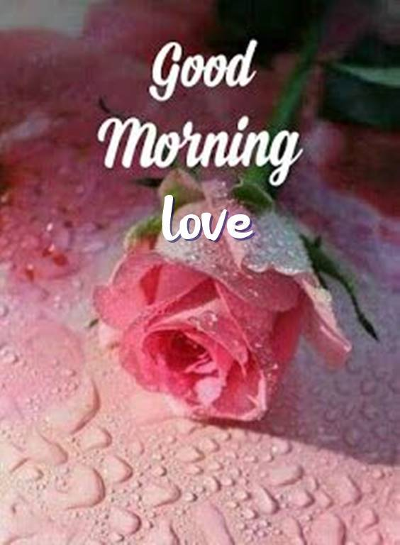 36 Good Morning for Love Beautiful Love Quotes 2