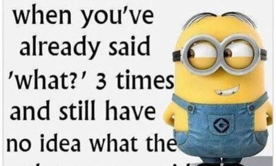 45 Fun Minion Quotes Of The Week 4