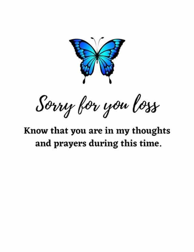 185 Sorry For Your Loss Quotes to Express Your Love Immediate Personal Condolences Messages | strength sorry for your loss quotes, condolences sorry for your loss images, inspirational sympathy quotes