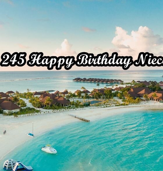 Happy Birthday Niece Wishes Quotes Messages
