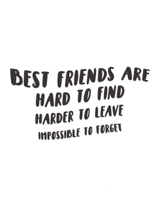 Famous Friendship Quotes on Friends Life Quotes