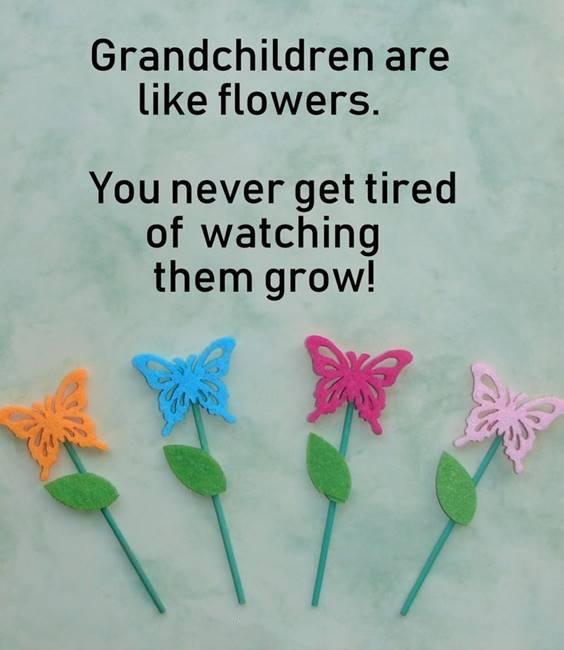 Grandparents Quotes To Grandson