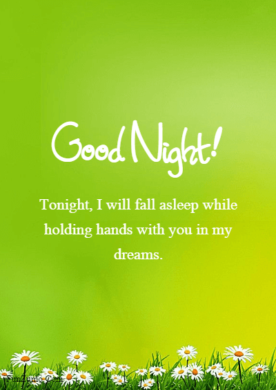romantic texts for him - Tonight, I will fall asleep while holding hands with you in my dreams.