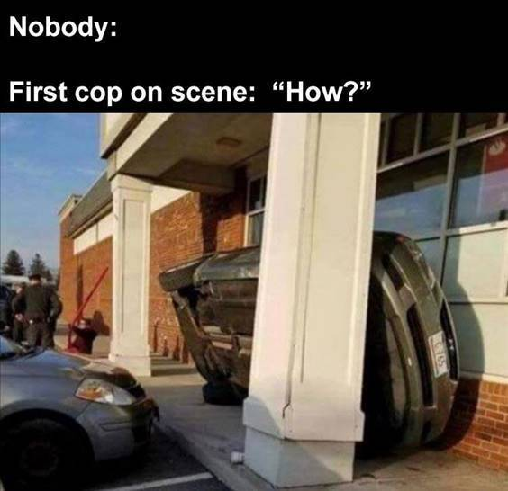 """Top 55 Hilarious Funny Memes Of All Time - Funny Everyday Memes """"Nobody: First cop on scene: """"How?"""""""""""