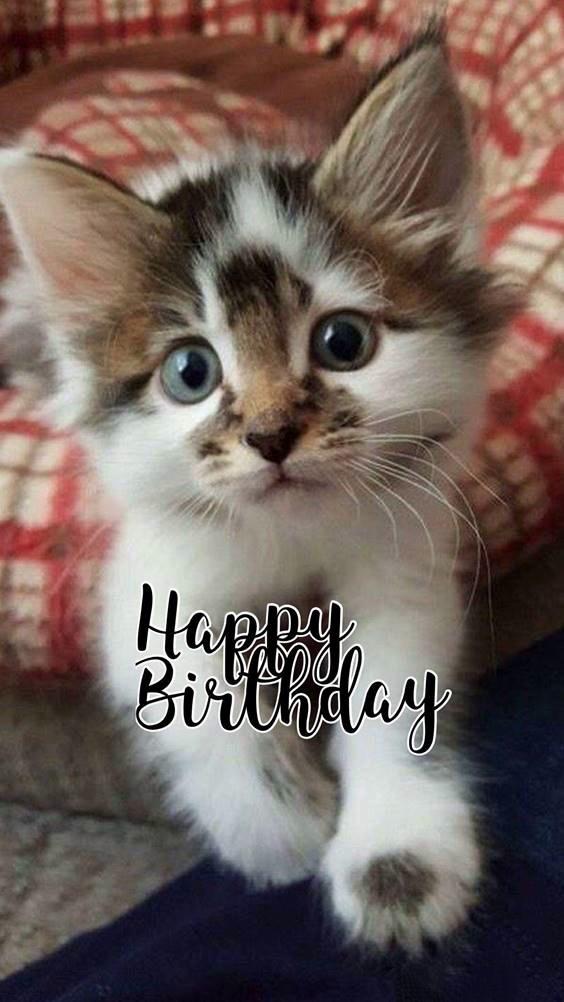birthday jpg images
