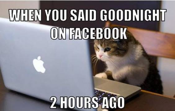 funny good night images lover