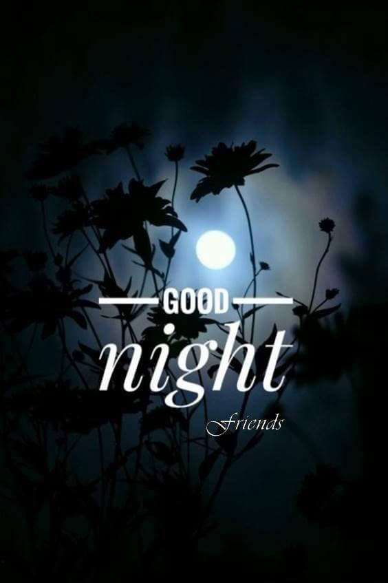 good night funny messages for friends 1