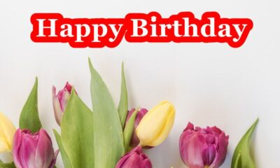 happy birthday flowers with quotes