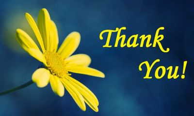Thank You Messages Wishes And Quotes What To Write In A Thank You Card