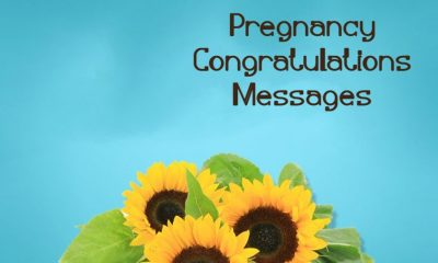 Congratulations On Your Pregnancy Wishes Congratulations Messages