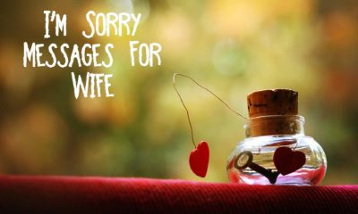 Romantic Sorry Messages for Wife – Sweet and Romantic