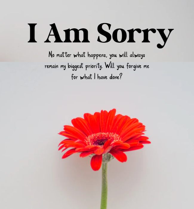 sorry msg for wife