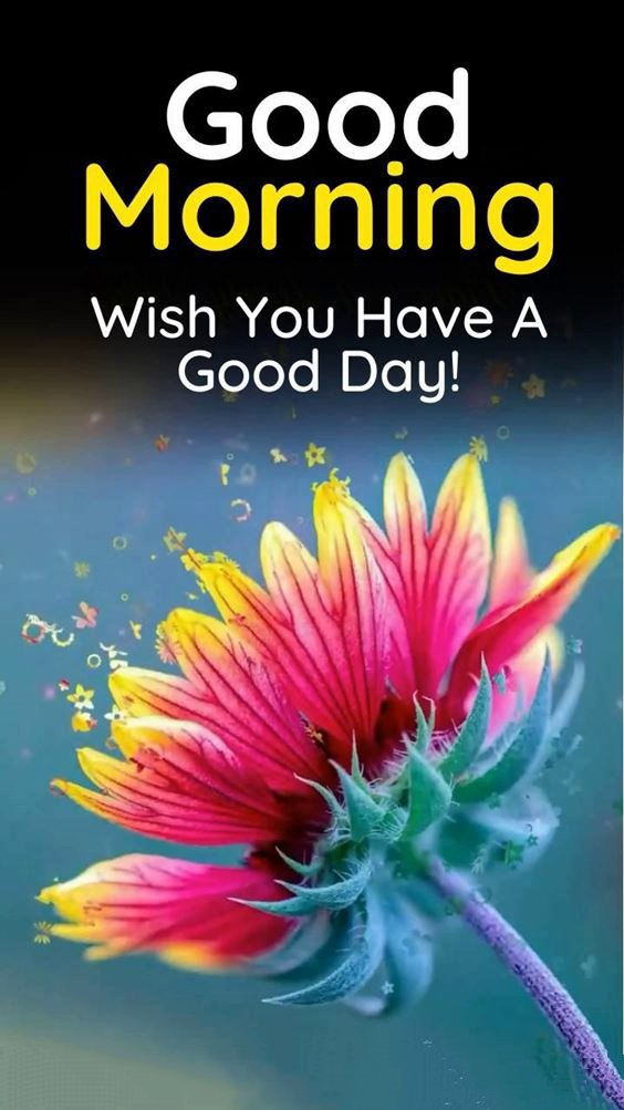 beautiful morning pictures New Good Morning Images With wishes Pictures And Quotes Positive Energy