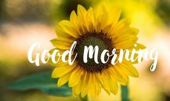 good morning beautiful images New Good Morning Images With wishes Pictures And Quotes Positive Energy