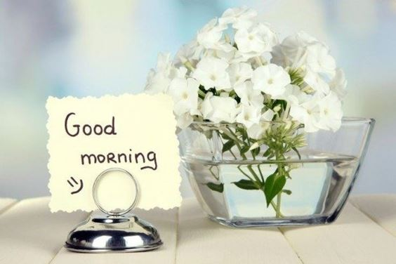 good morning pictures New Good Morning Images With wishes Pictures And Quotes Positive Energy