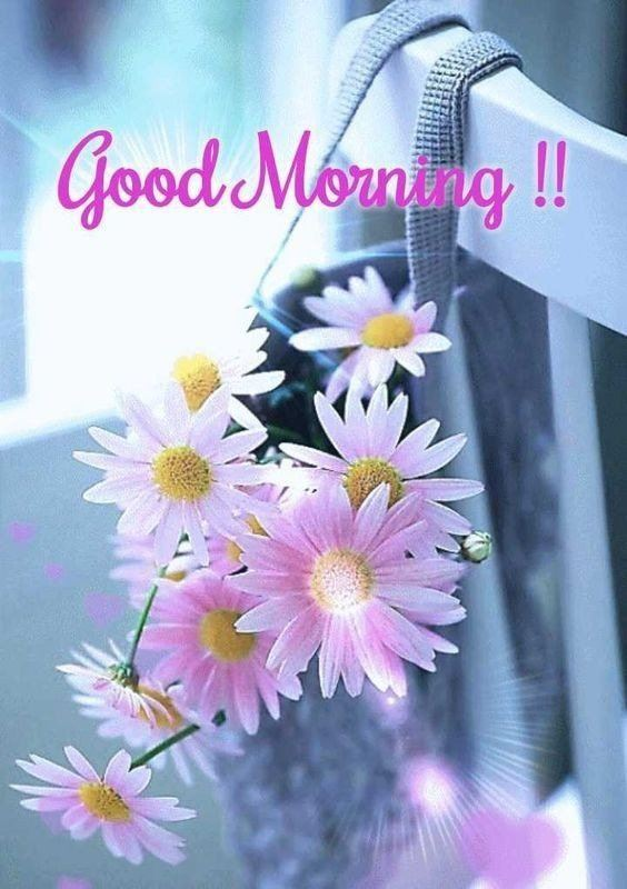 good morning pictures images New Good Morning Images With wishes Pictures And Quotes Positive Energy