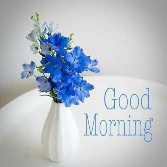 images of good morning New Good Morning Images With wishes Pictures And Quotes Positive Energy