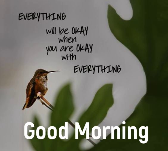 morning wallpaper New Good Morning Images With wishes Pictures And Quotes Positive Energy