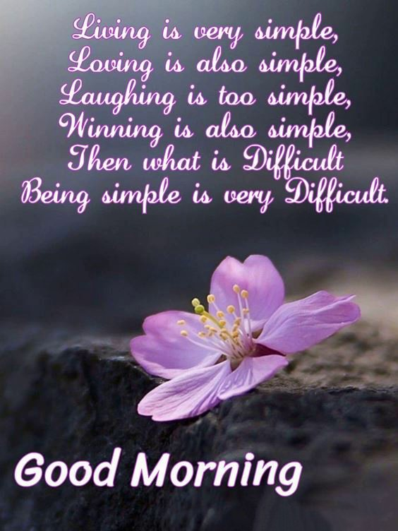unique good morning images New Good Morning Images With wishes Pictures And Quotes Positive Energy