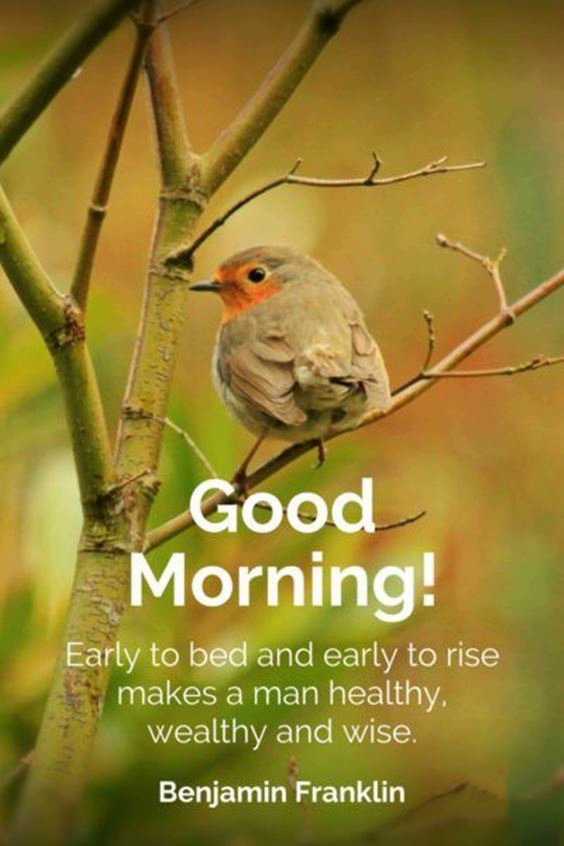 very good morning images New Good Morning Images With wishes Pictures And Quotes Positive Energy